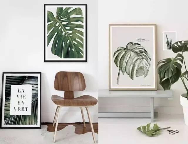 ins风手绘植物