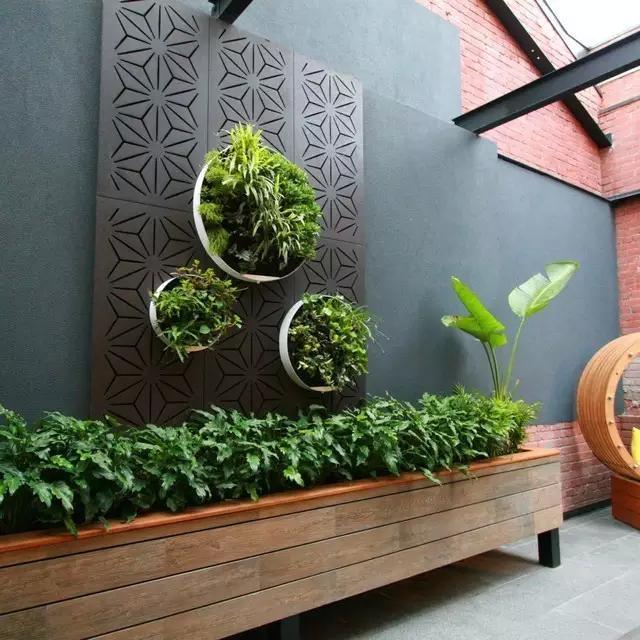 绿植上墙,这般有创意的设计,美得我都迈不动腿!图片