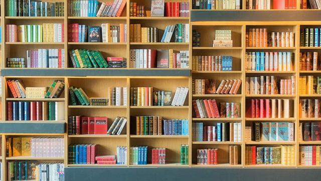 书架新装修,只能说这才叫书架!