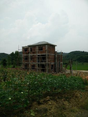 晒晒家园又添一栋500m自建农村,听说光装修就花了100万别墅盛世东城东营别墅图片