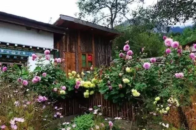 【庭院设计】乡村小院的正确打开方式