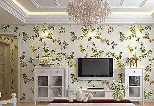 然后电视背景墙的边框可以采用淡绿色的,其低衬可以配一些白底绿碎花