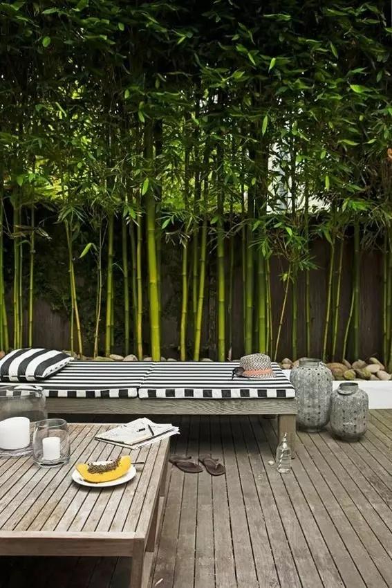 有钱人的院子都是怎么设计的?大气有格调真没你想象的