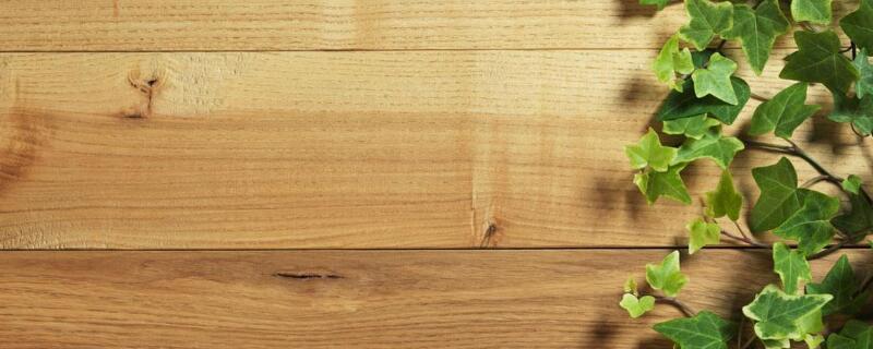 木板隔断墙