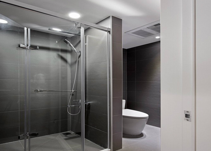 前卫现代灰色卫生间隔断设计效果图