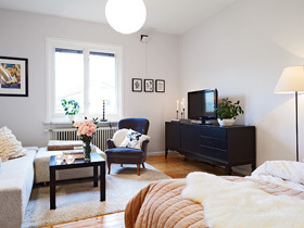 北欧风一居室 单身公寓别样设计