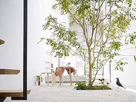 14张庭院景观设计图 唯美清新