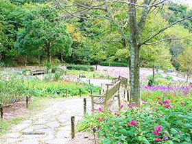 12张日式庭院效果图 不一样的异域风情