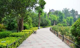 公园风景图片案例