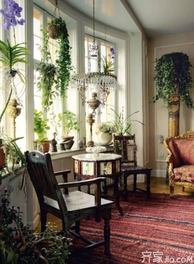 出色的家居绿植设计