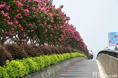 新萄京娱乐场.2959.com 2