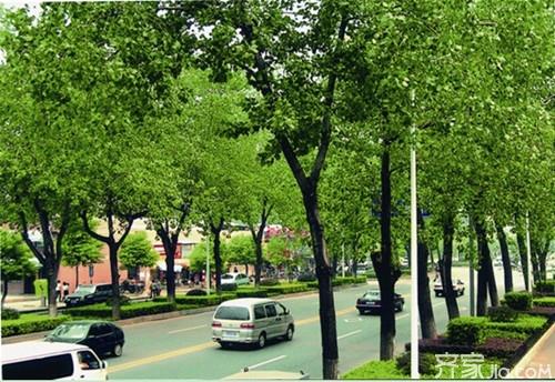 新萄京娱乐场.2959.com 9