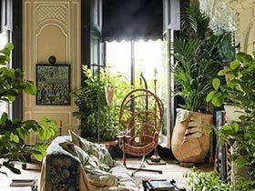 全方位绿色环绕  10个室内花园设计图片