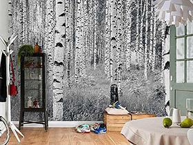 感受大面积的美  10个创意壁纸背景墙图片