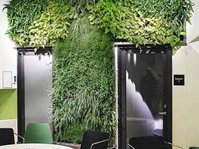 还原自然本色  10款植物背景墙设计图