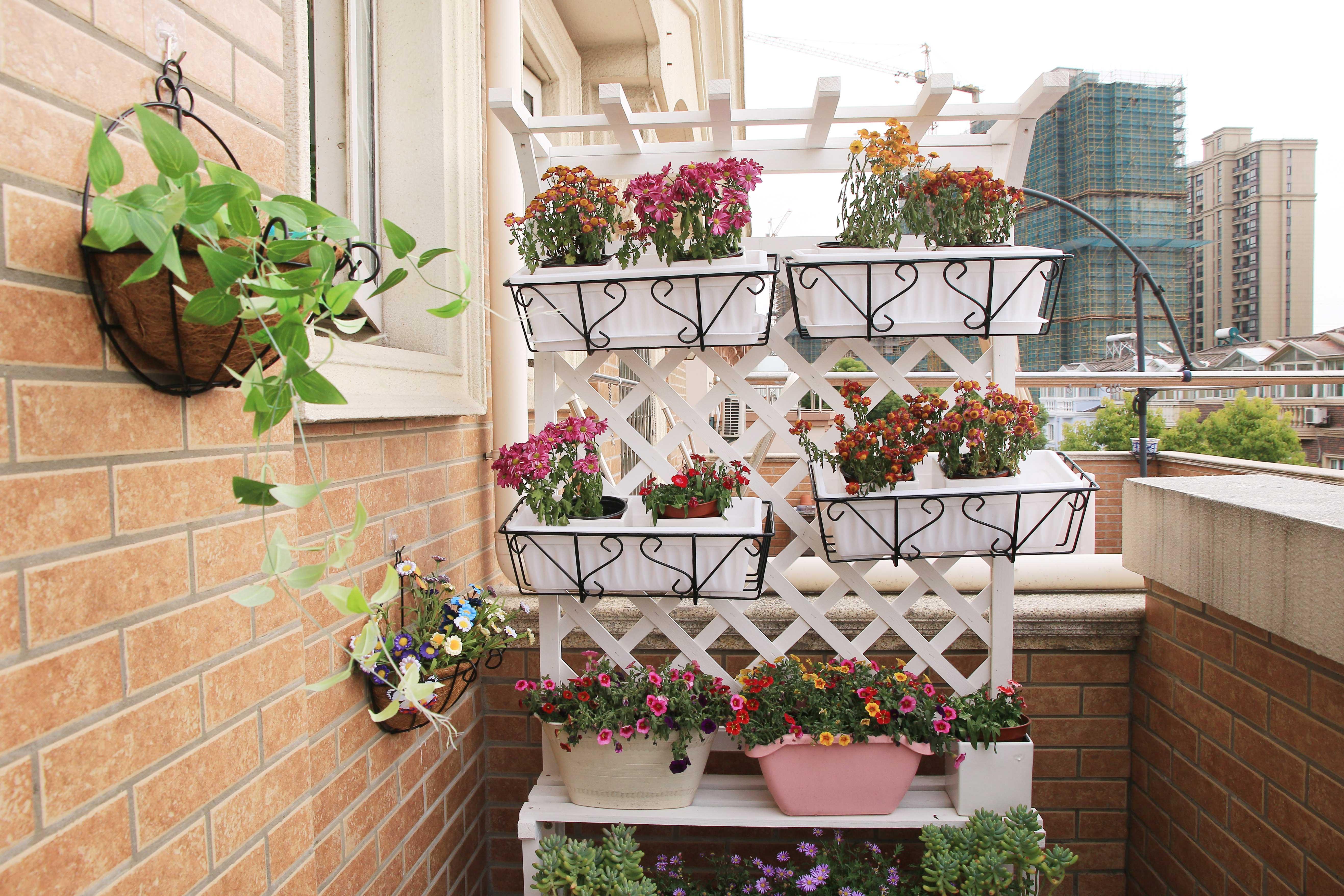 一居室北欧简约风公寓装修阳台花卉区