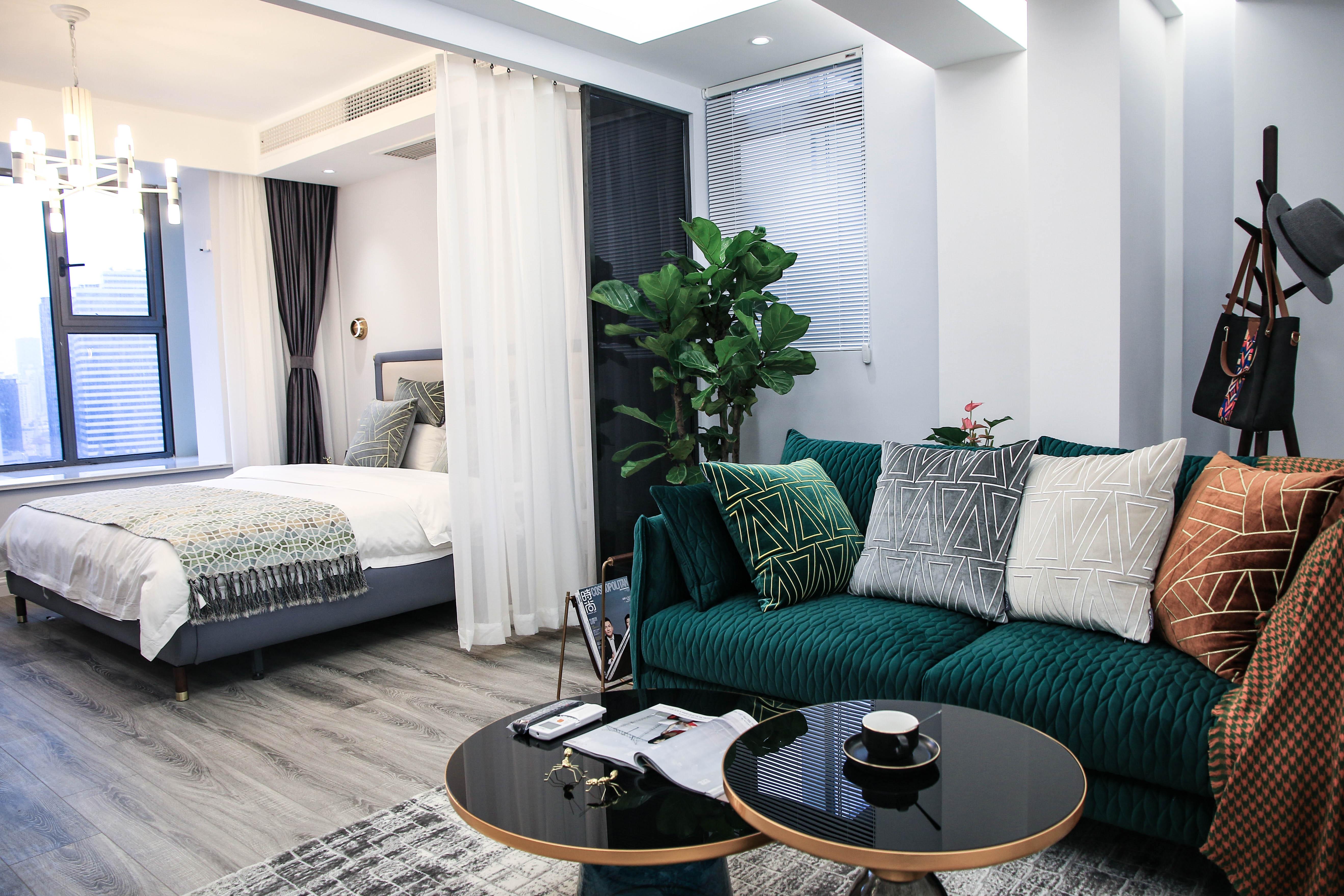 现代轻奢一居室装修客厅一角