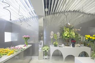 花店设计 晨雾中的花园