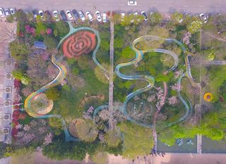 樱花园林景观设计