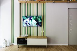 简约二居公寓电视背景墙装修效果图
