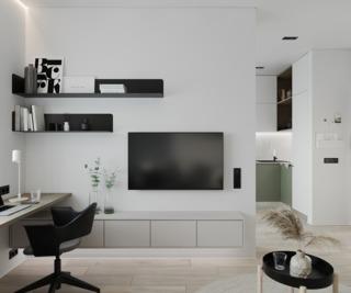 小户型一居室电视墙装修效果图