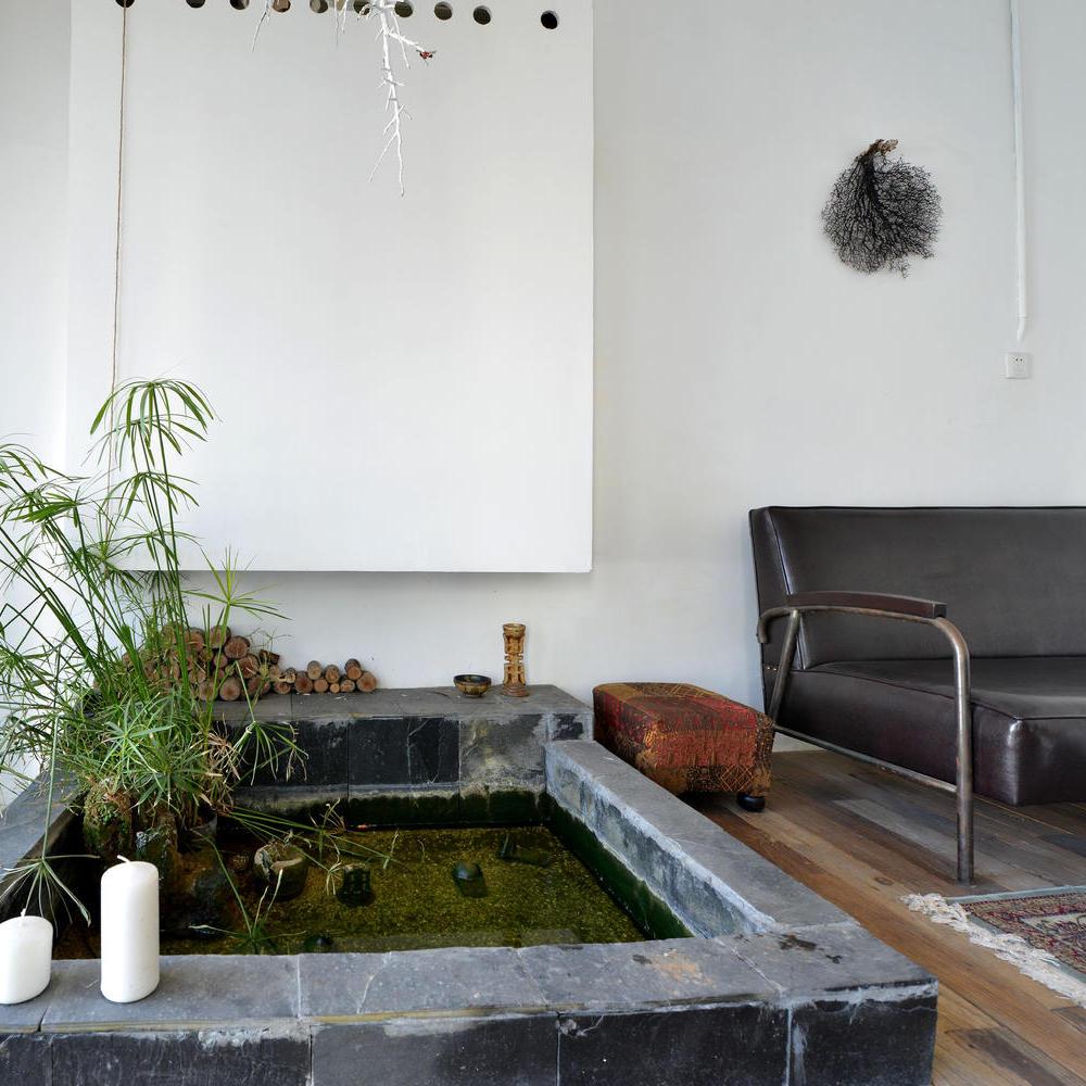 自然北欧风情 室内小花园鱼池效果图
