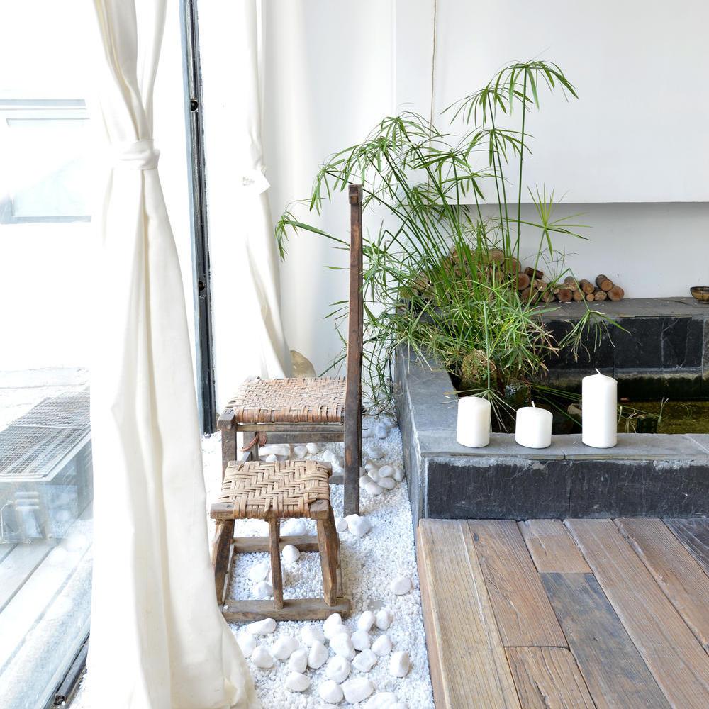 精美自然北欧风 室内小花园效果图